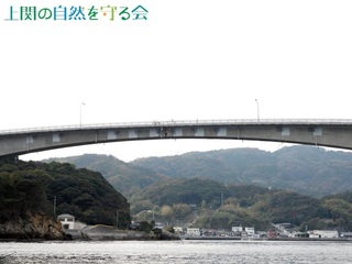 今話題の上関大橋201122.jpg