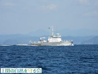 巡視艇げんうん201026.jpg