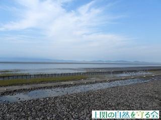 東よか干潟200919.jpg