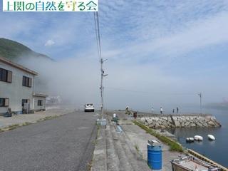b出港前の白浜.jpg